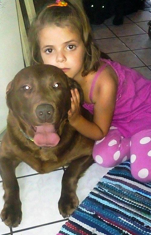 Labrador i dziecko