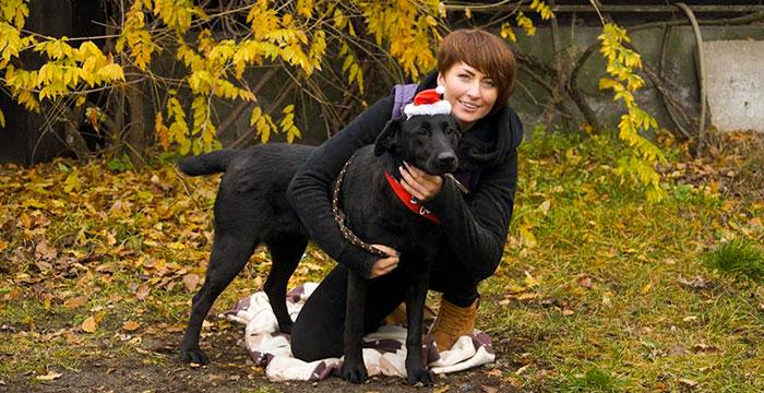 Ginny, labradorka do adopcji