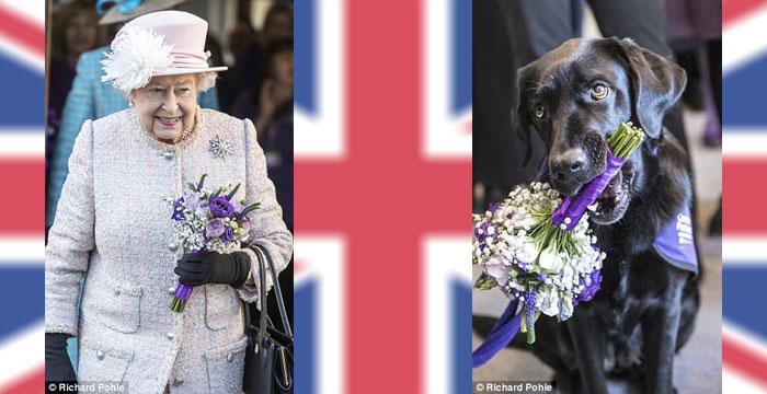 Suczka Yarna wręcza bukiet kwiatów Królowej Brytyjskiej