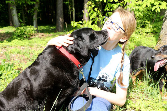 Marika, labradorka do adopcji