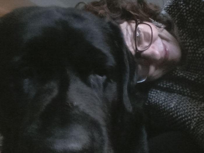 Labrador Pele